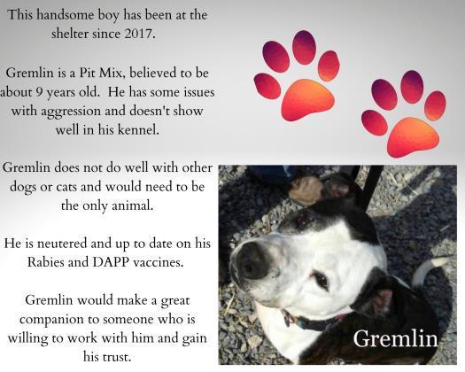 Gremlin detail page