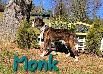 Monk detail page