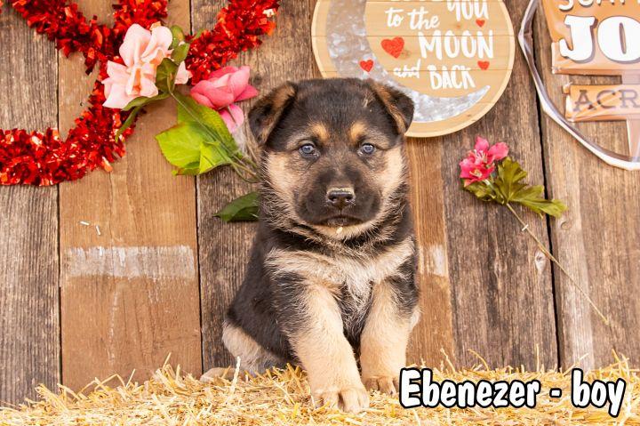 Ebenezer 1