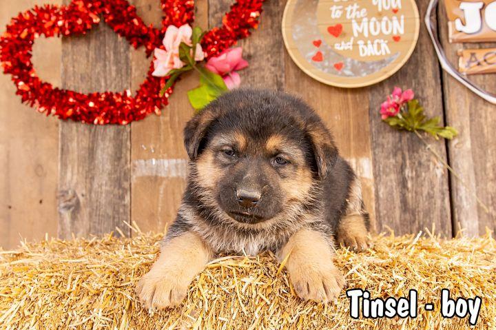 Tinsel 2