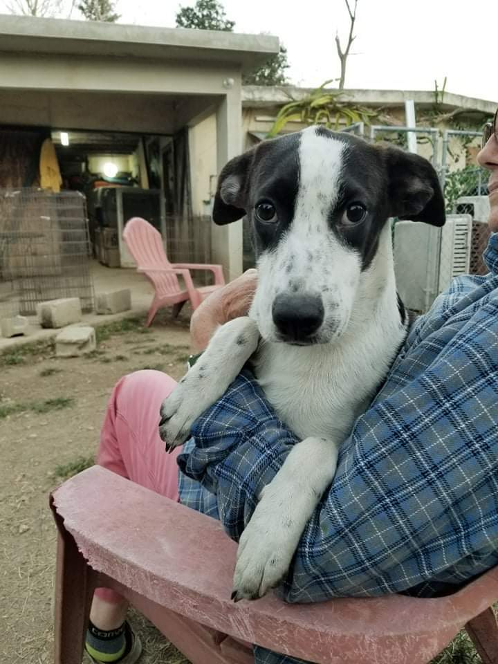 BANDIT-Unfortunately we cannot accept any more applications. 6