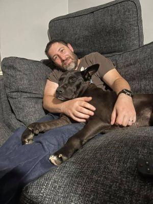 Mollie (AL) German Shepherd Dog Dog
