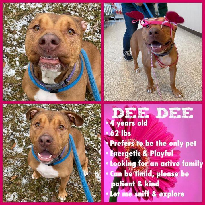 DeeDee 4