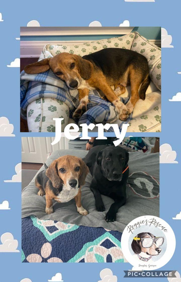 Jerry 4