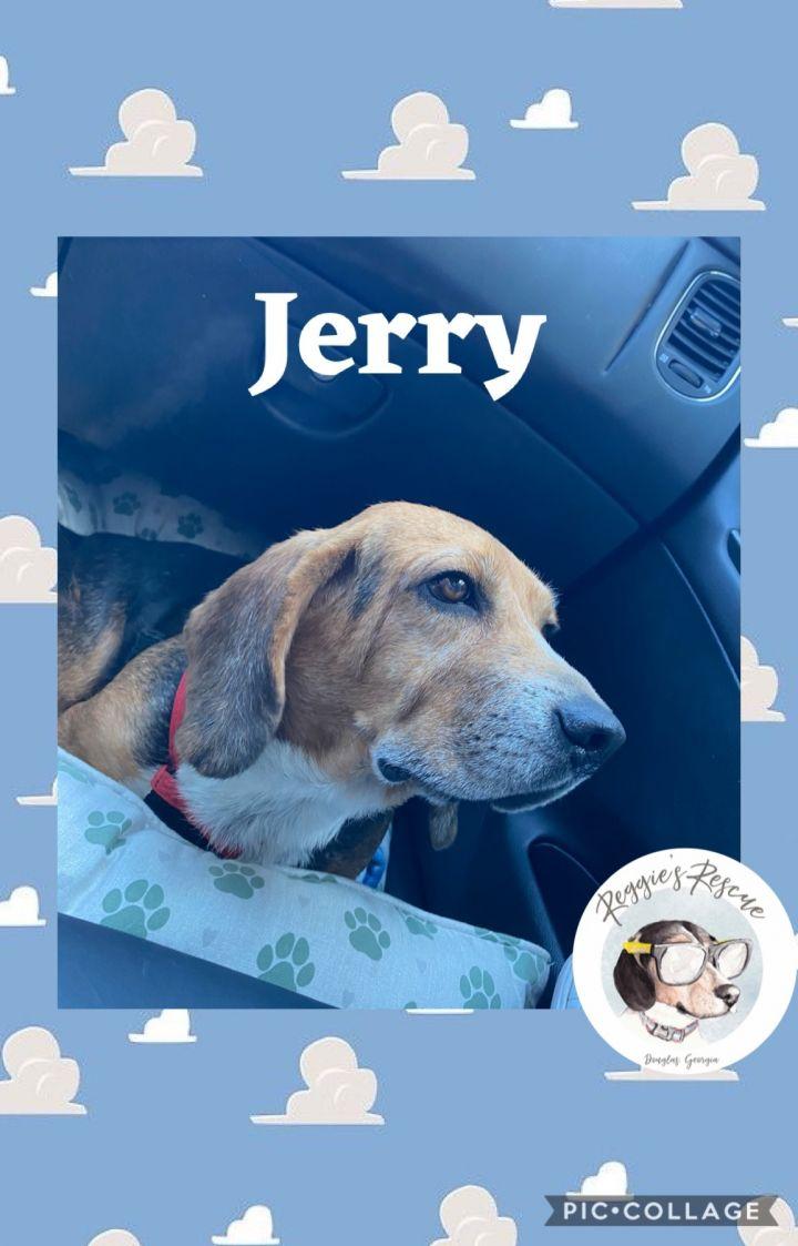 Jerry 6