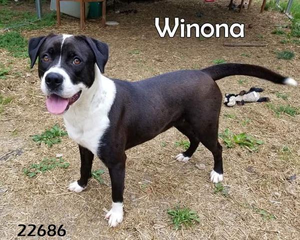 Winona detail page