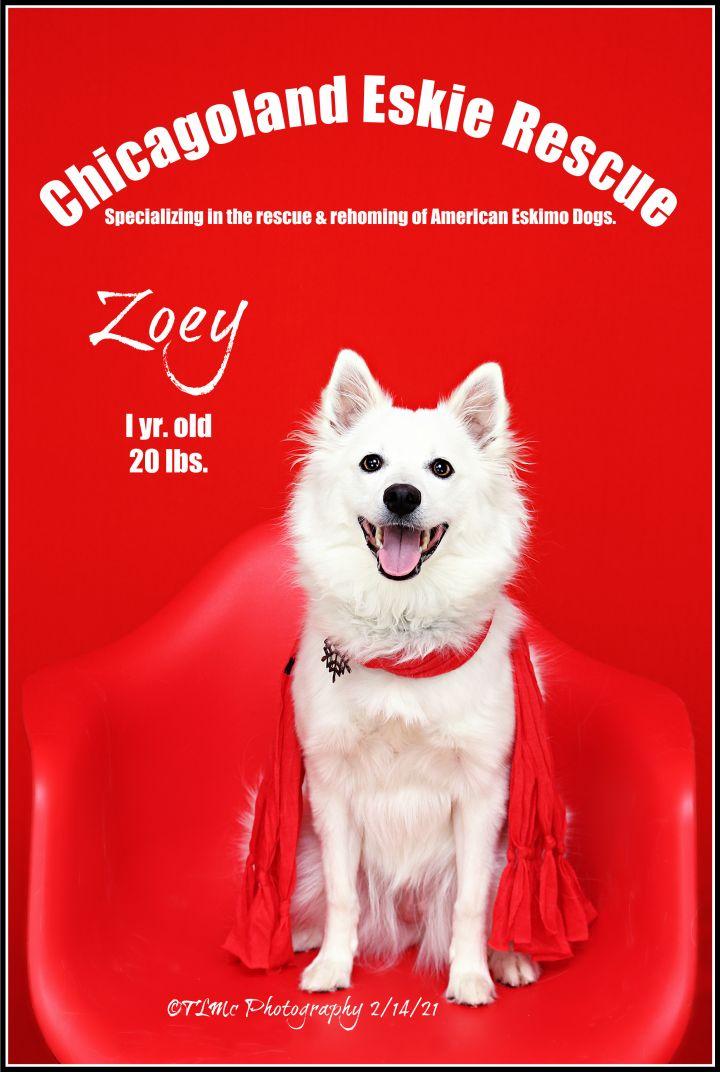 Zoey 3