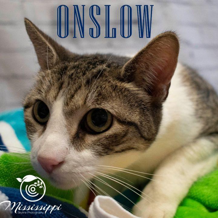Onslow 1