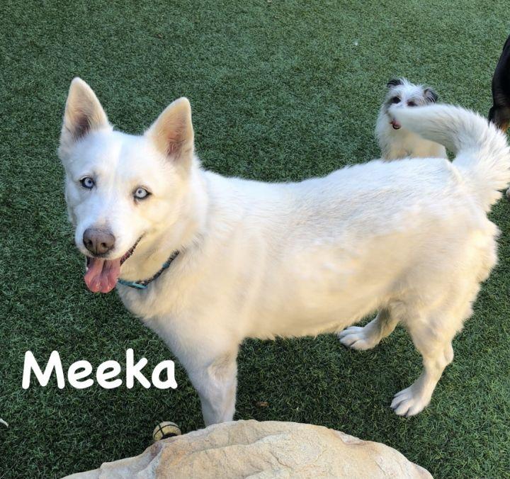 Meeka 2