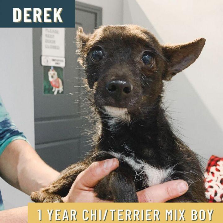 Derek 3