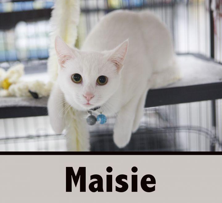 MARKI & MAISIE 1