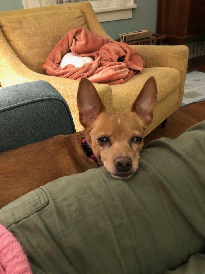 Frida - Chloe 5