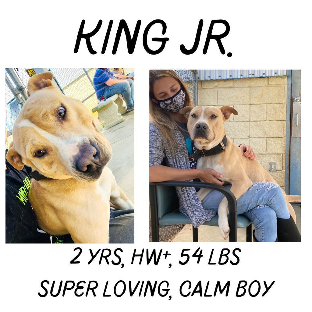 King Jr
