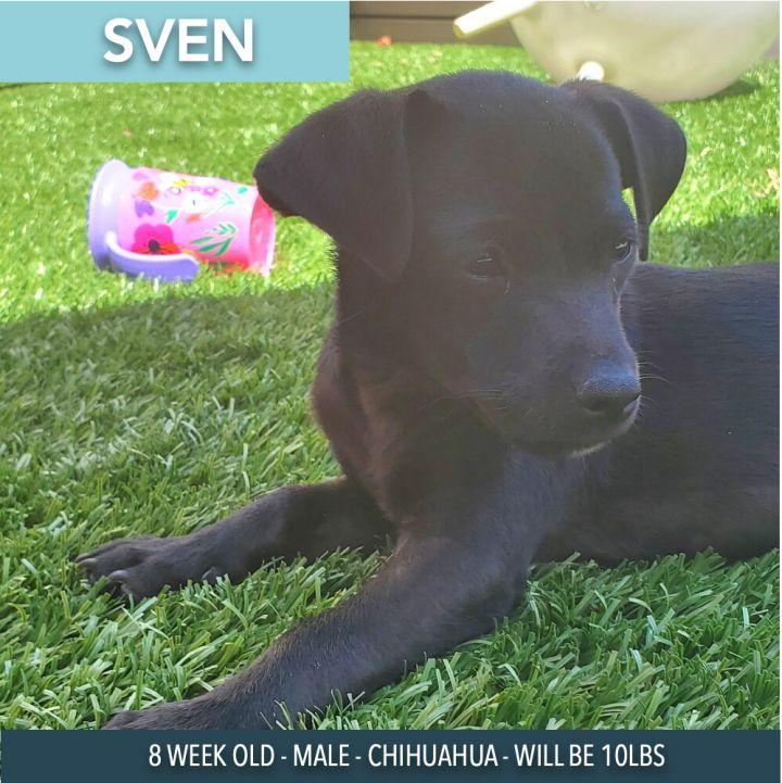 Sven 1