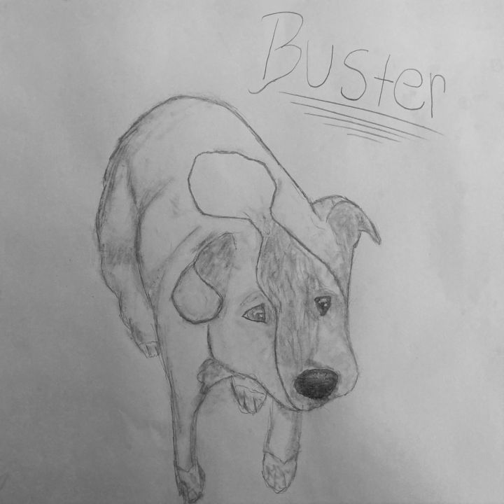 Buster 1