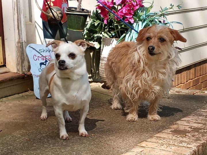 Sophie and Sasha 3