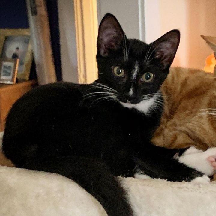 Hazel and Finn 3