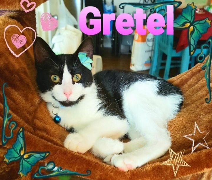 Gretel 1