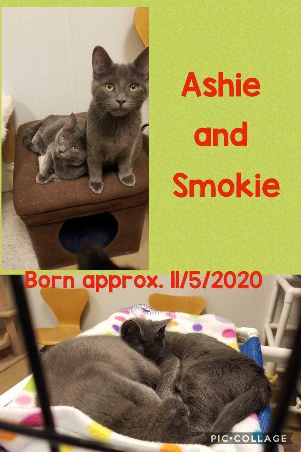 Ashie and Smokie