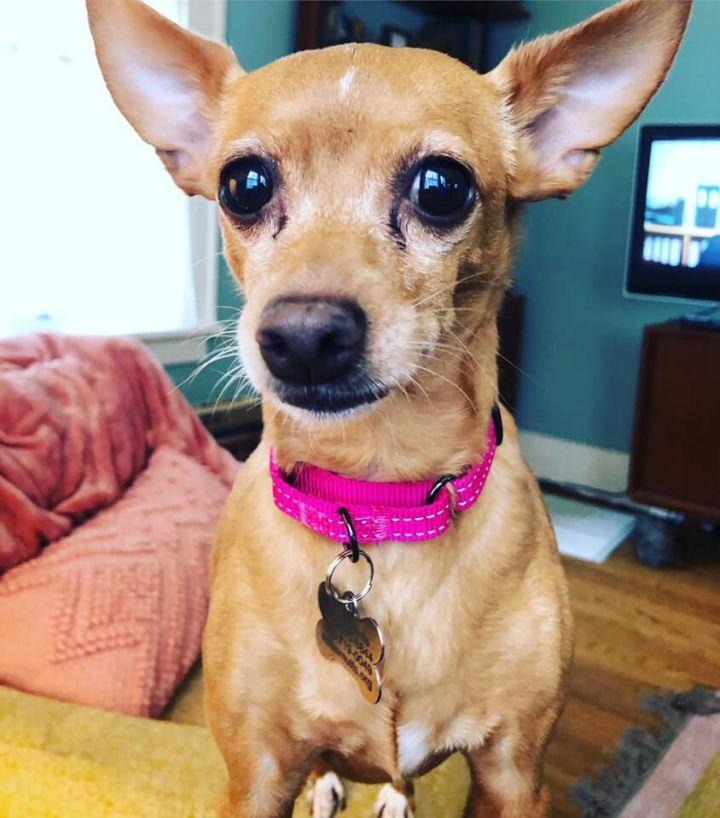 Chloe 2