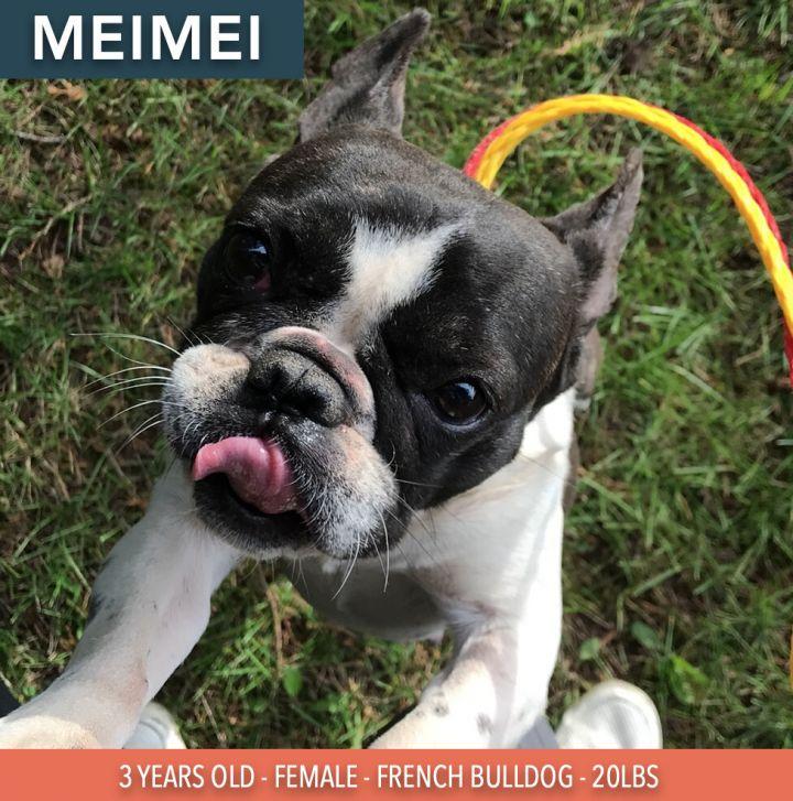 Meimei 1