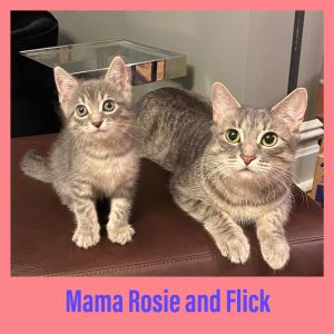 Mama Rosie and Flick  straight out of a movie this Mom and Son are sweet as could be and