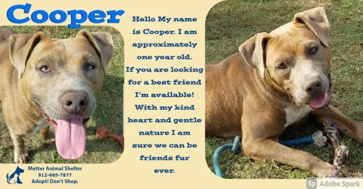 Cooper 1