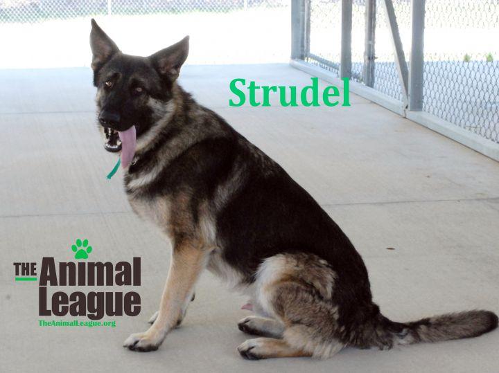 Strudel 1