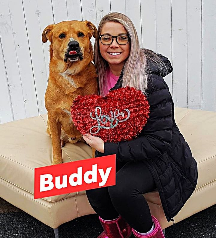 Buddy chow 5