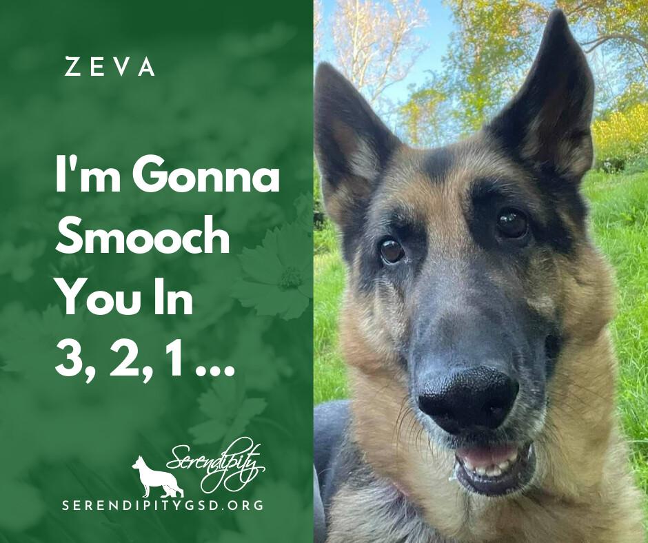 Zeva detail page