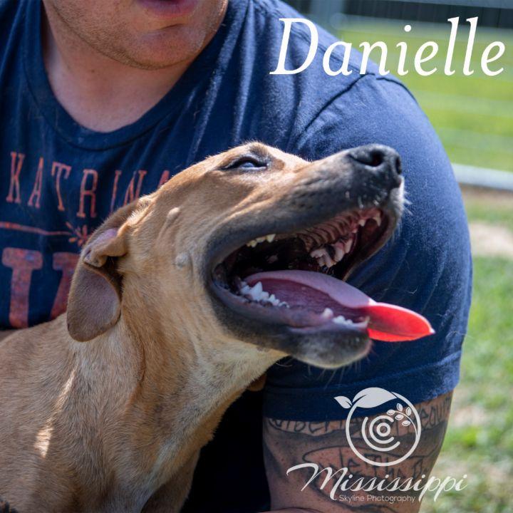 Danielle 5