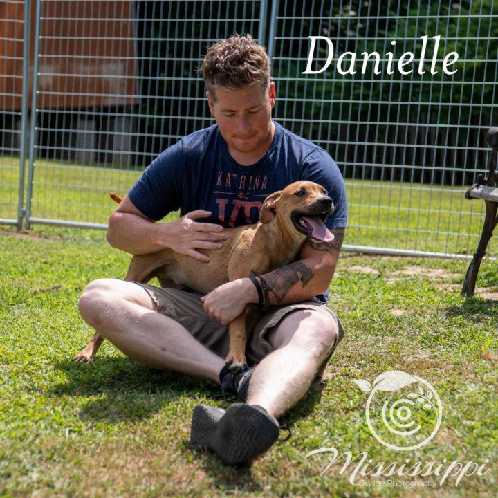 Danielle 6