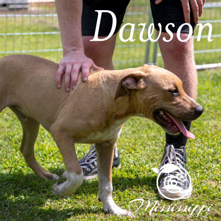 Dawson 6