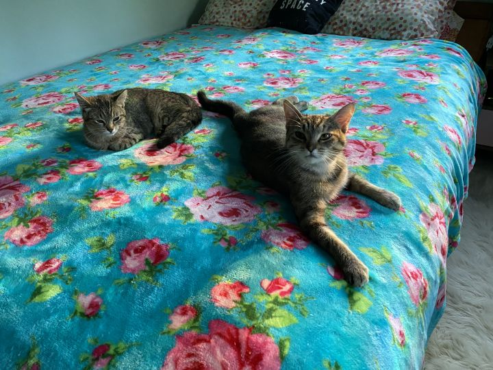 Penny & Frances 6