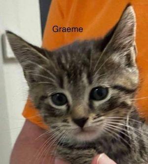 Photo of Graeme