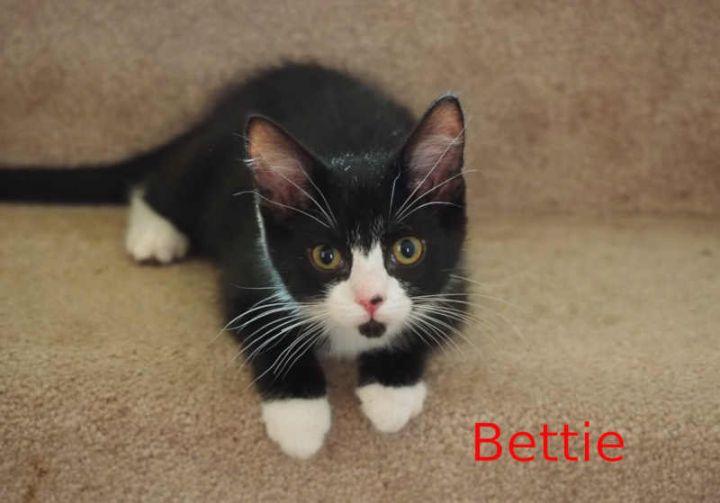 Bettie 1
