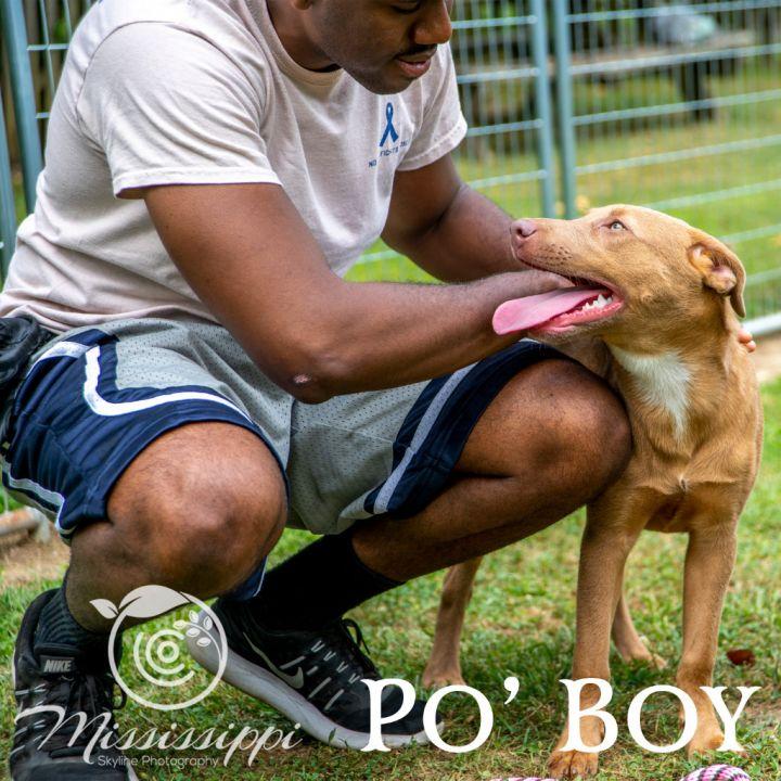 Po'Boy (Rueben) 6