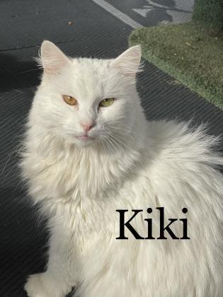 KiKi 2