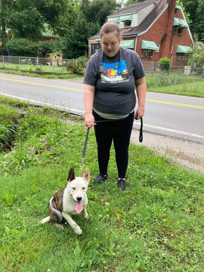 Alexa (foster to adopt)
