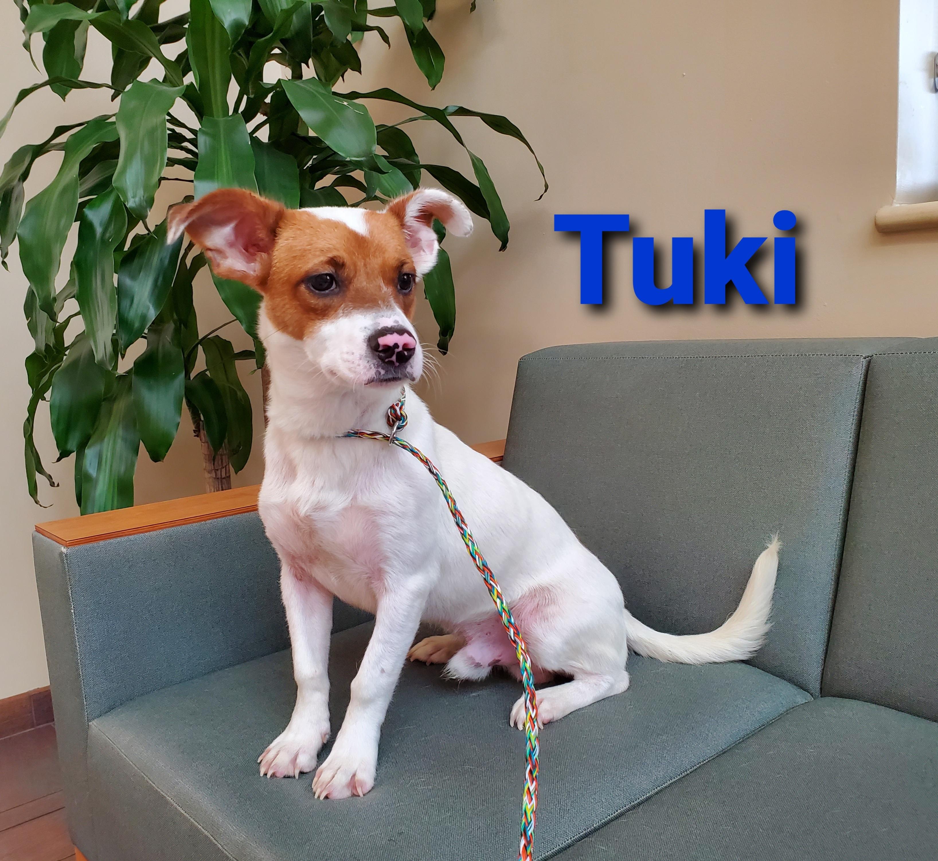 Tuki detail page