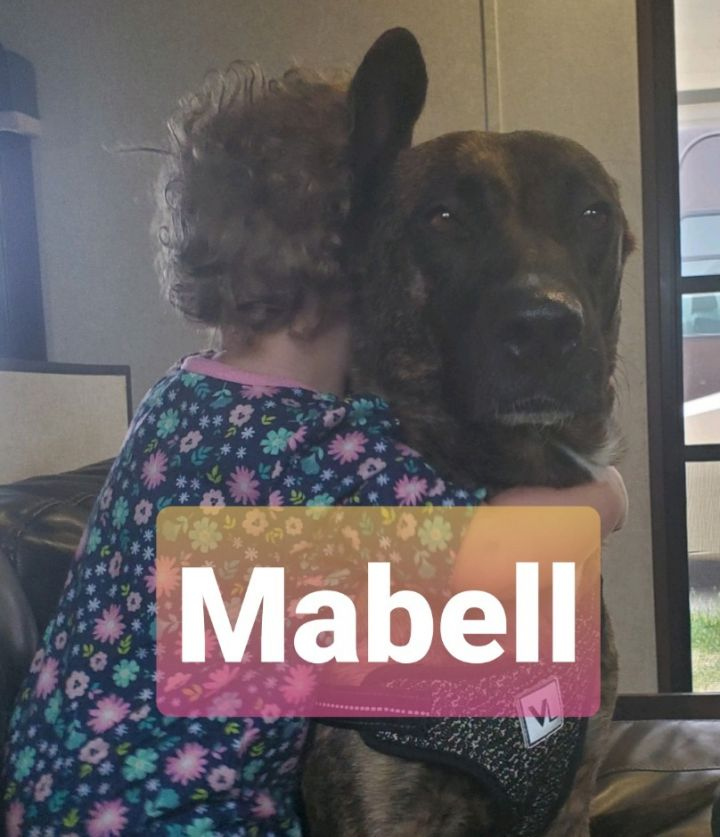 MaBell 1