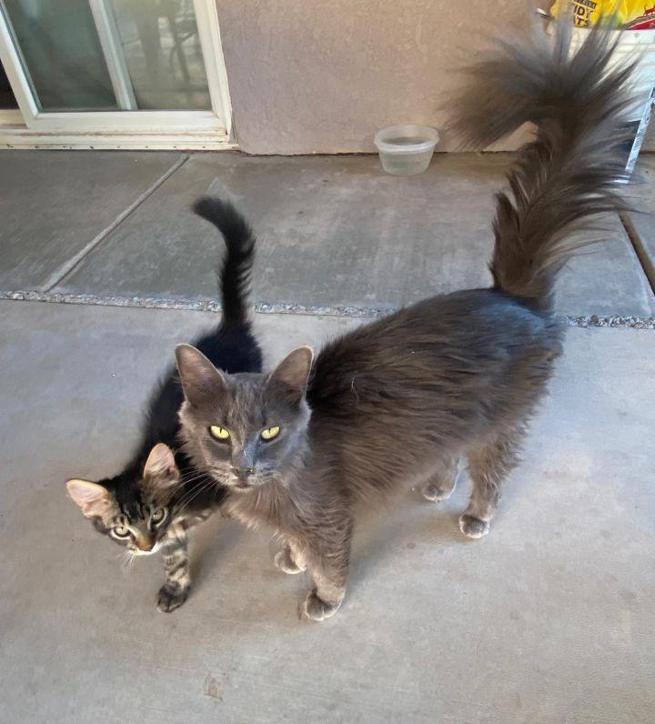 Samanta and Sabrina 1