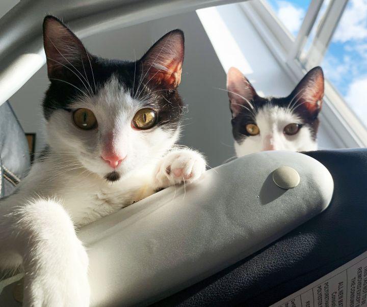 Daisy and Buddy 5