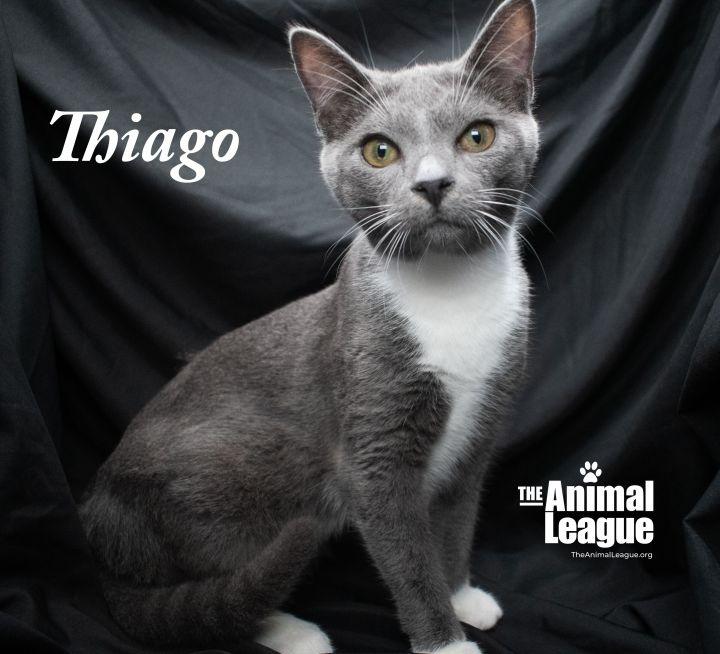 Thiago 2