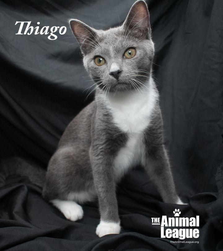Thiago 3