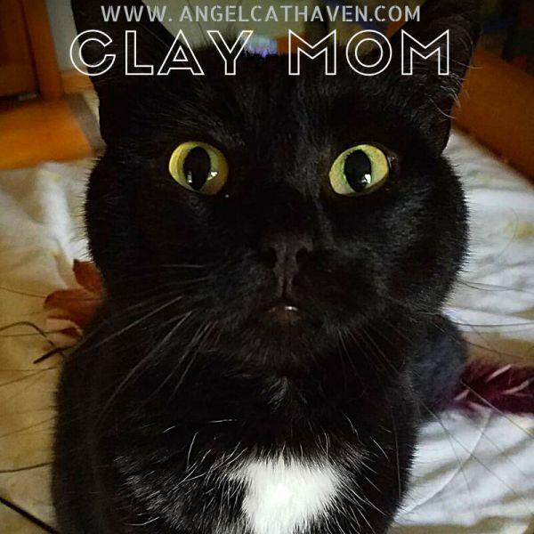 Clay Mom
