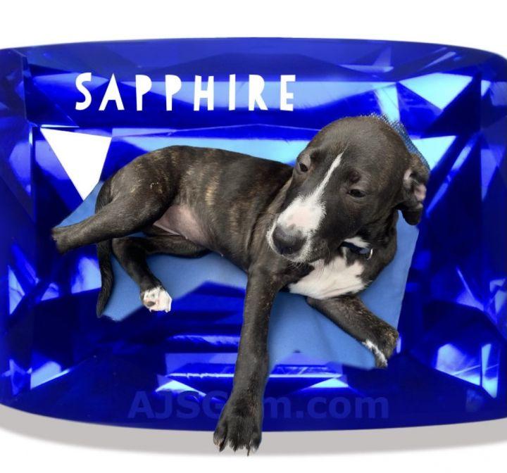 Sapphire 5