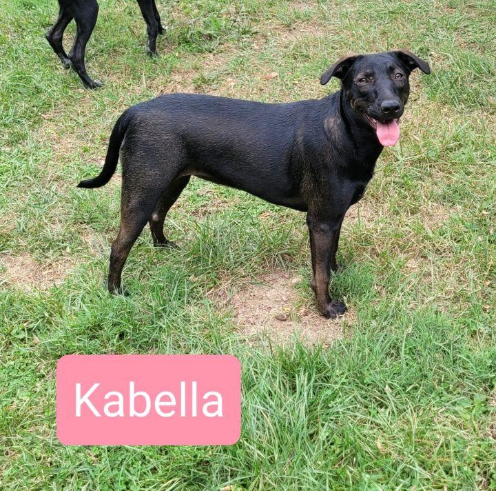 Kabella 4