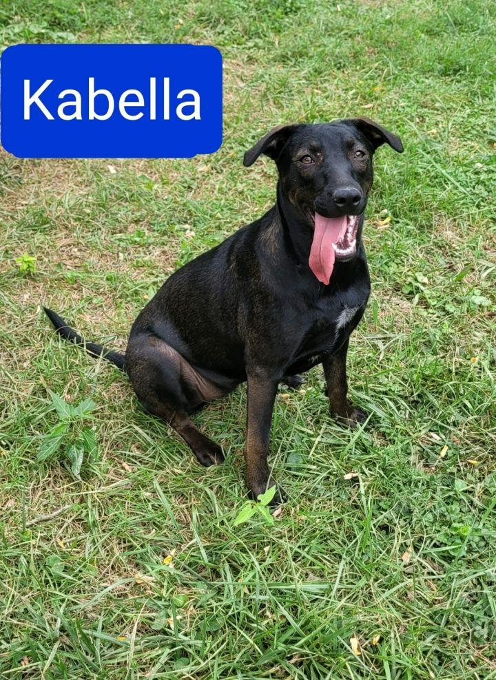 Kabella 5