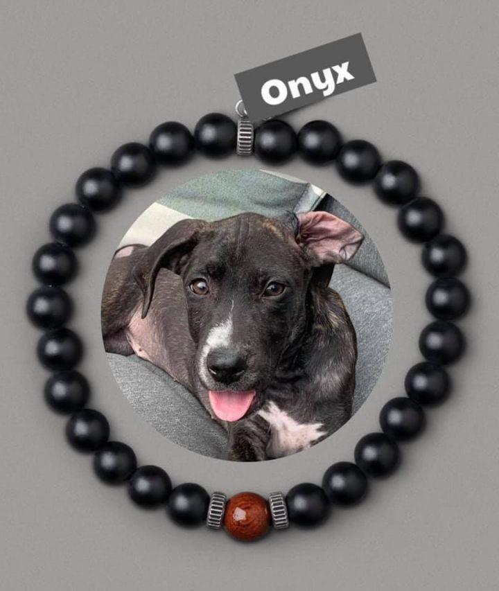 Onyx 3